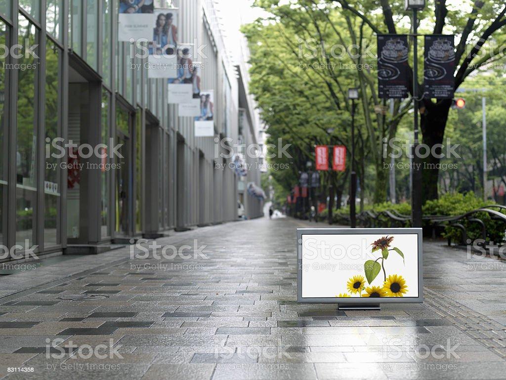Flat TV placed on Omotesando street royaltyfri bildbanksbilder