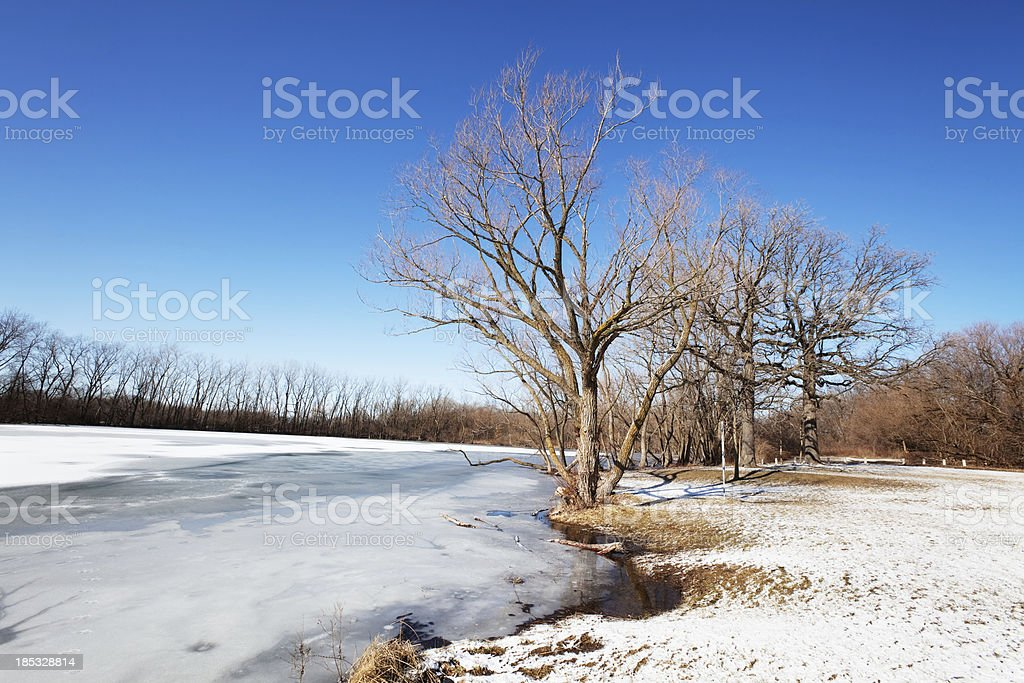 Flatfoot Lake in Beaubien Forest Preserve, Riverdale, Chicago royalty-free stock photo