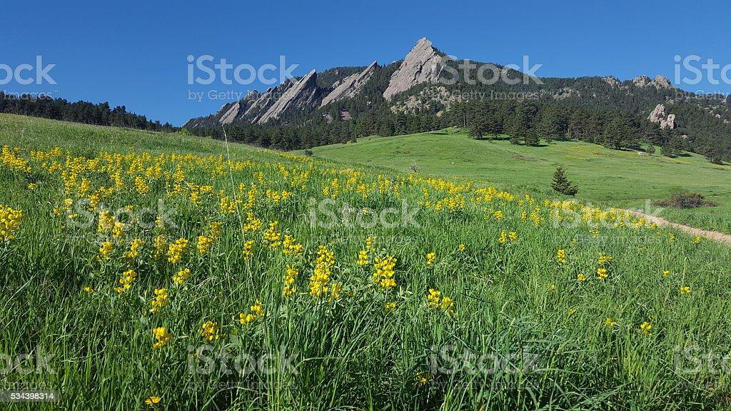 Flatirons, Boulder, Colorado in springtime stock photo