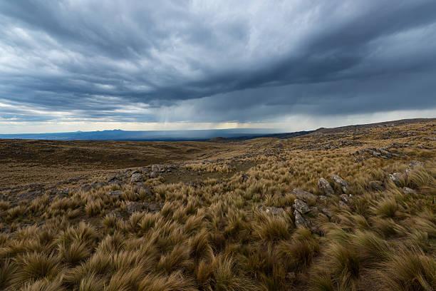 Flatland – Foto