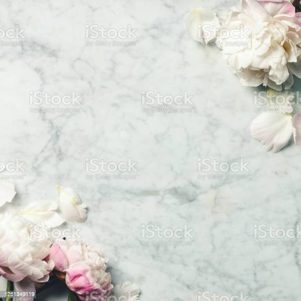Flatlay of beautiful peony flowers over vintage marble background top picture id1251349119?b=1&k=6&m=1251349119&s=612x612&h=z ebymsjthd k8zq9jiumx01e59aszy08gn1d tqmlo=