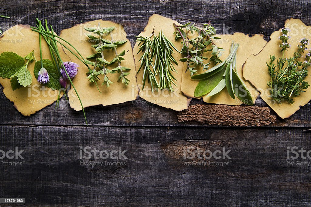Flavors Of Herbs royalty-free stock photo