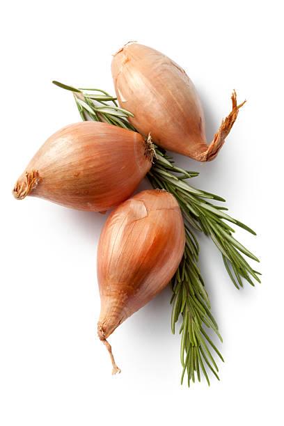 flavouring: shallot and rosemary - sjalot stockfoto's en -beelden