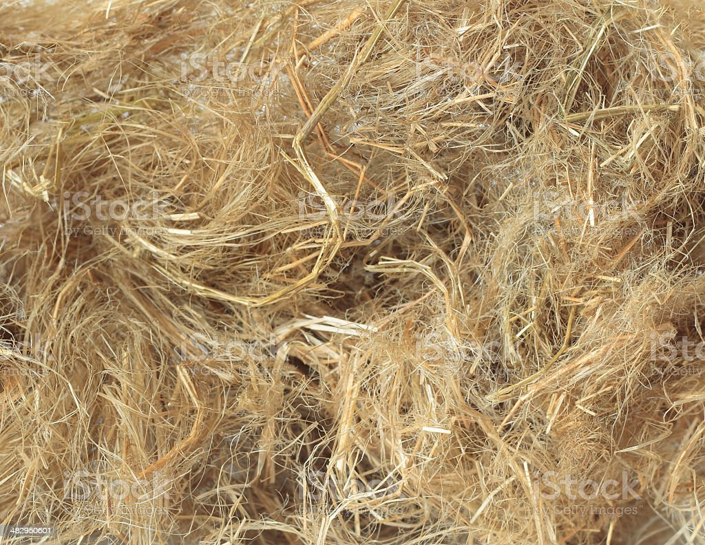 flax background stock photo