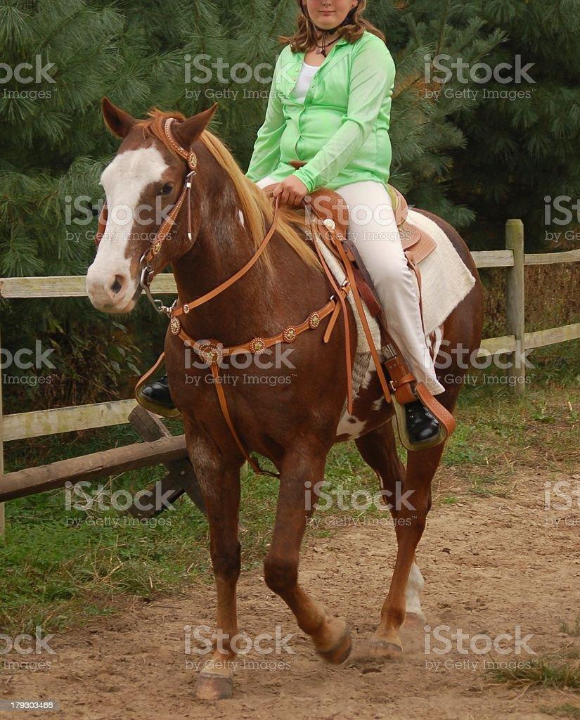 Flaxen Mane Sorrel Paint Horse stock photo