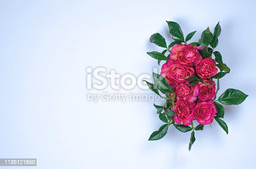 1147995495 istock photo Fletley of flowers of roses on a gray background. 1135121850