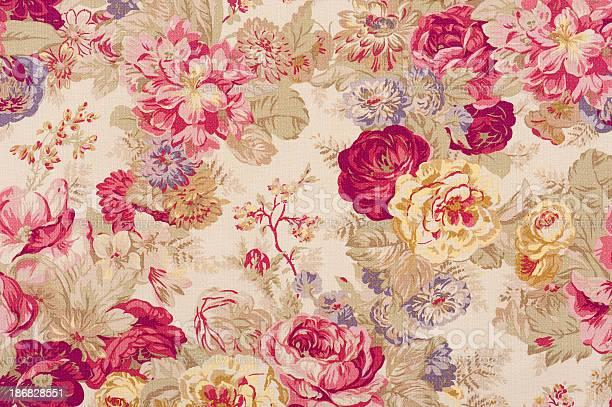 Fleur de jour close up picture id186828551?b=1&k=6&m=186828551&s=612x612&h=cim4xgzlzojlc gz2s39xlh3ztghx8wgizc7muyhrkm=