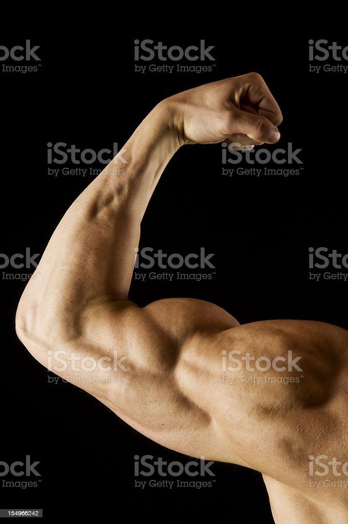 Flexed man's biceps on black stock photo
