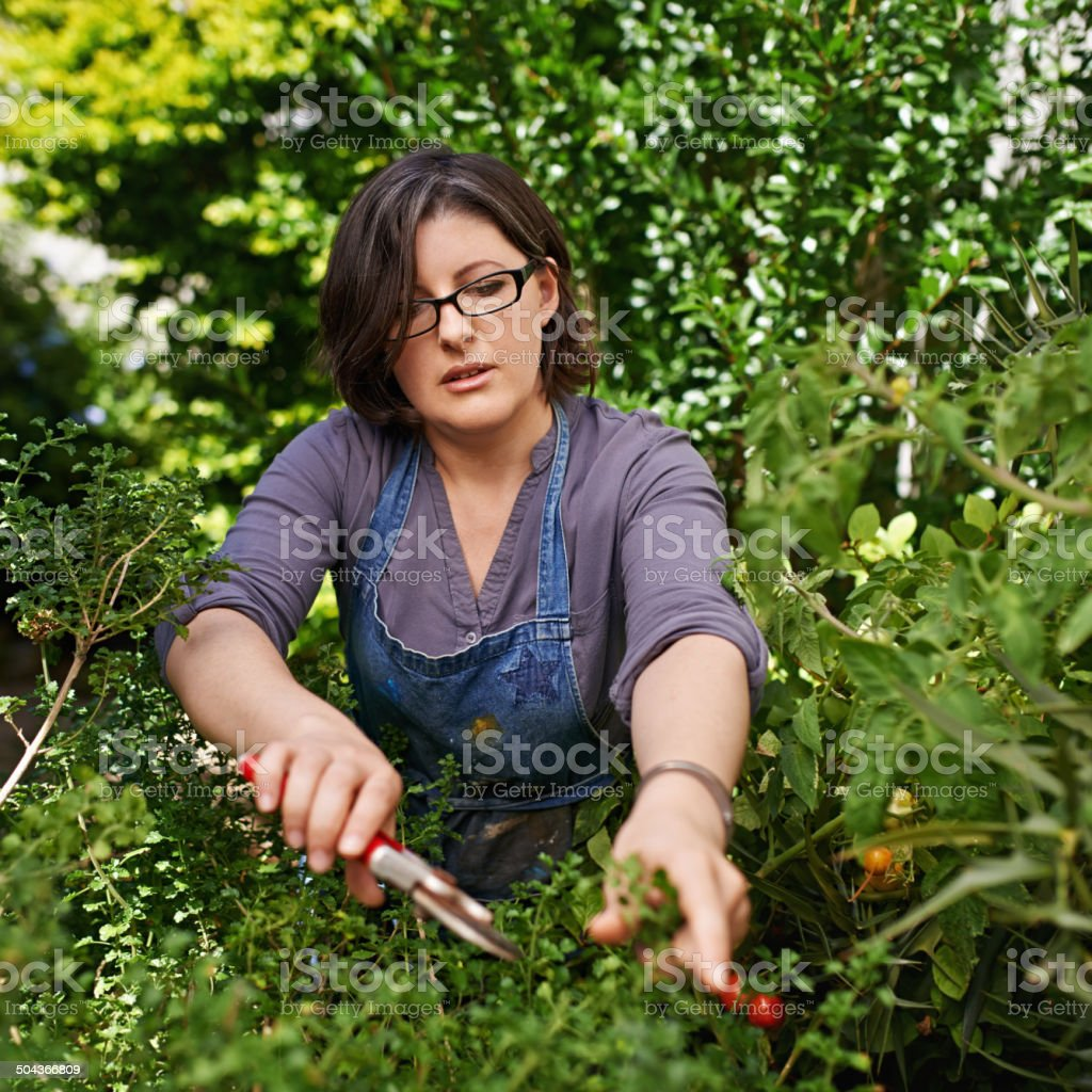 Flexing those green fingers stock photo