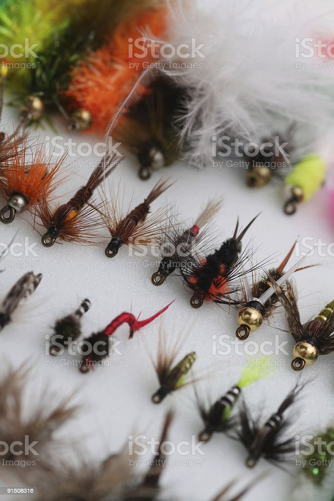 flies for fly fishing stock photo