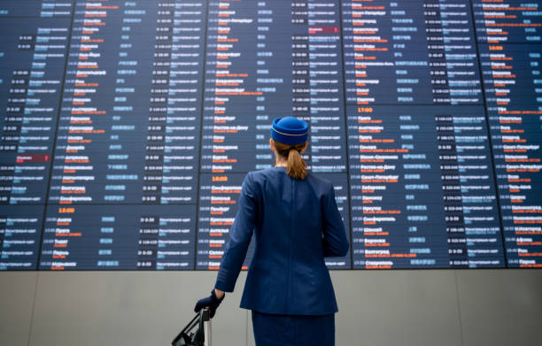 Flight attendant at the airport checking an arrival departure board Portrait of a flight attendant at the airport checking an arrival departure board and carrying her luggage air stewardess stock pictures, royalty-free photos & images