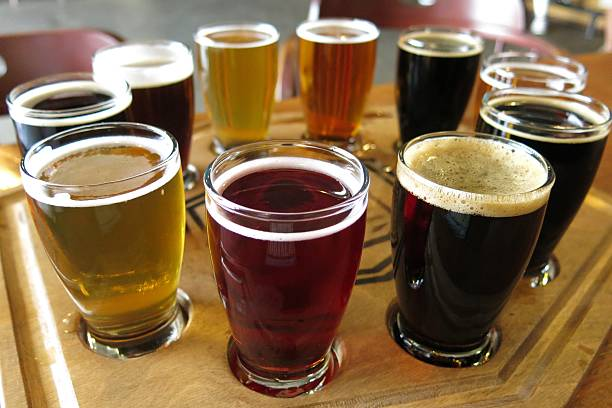 flight of beers at a beer tasting - dark beer stock photos and pictures
