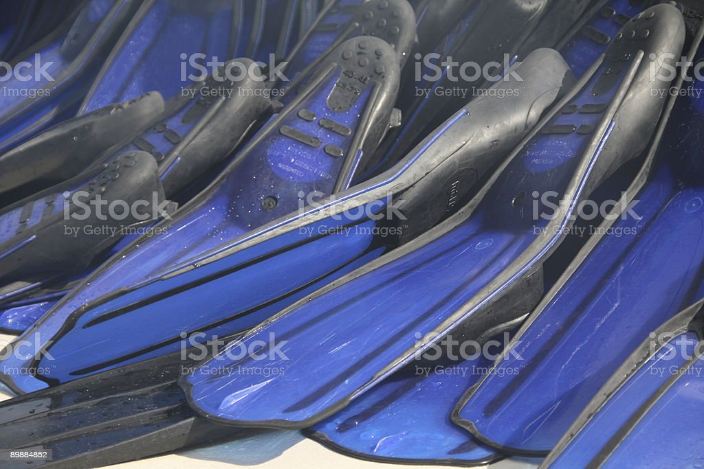 Flippers royalty-free stock photo