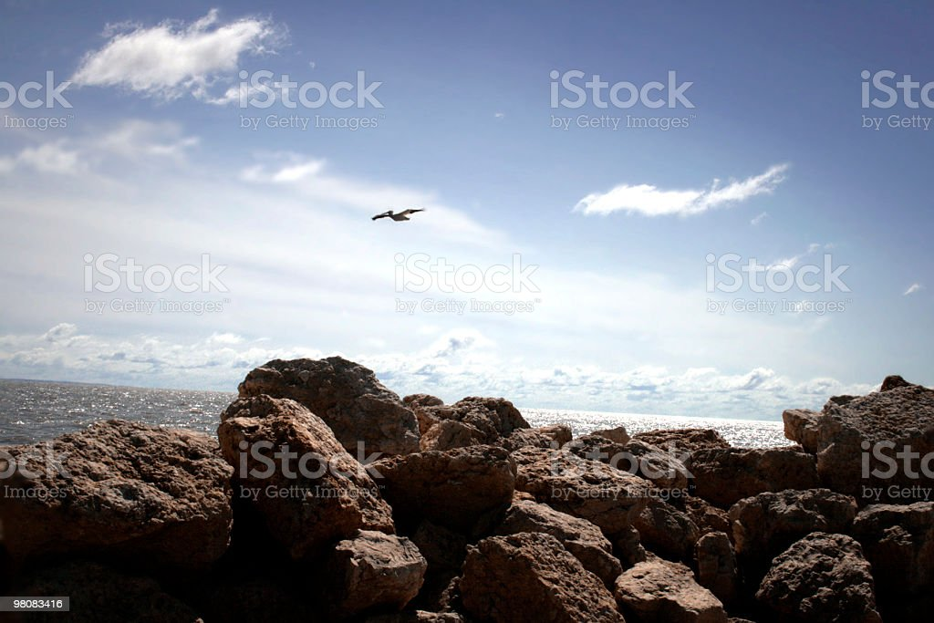Floating By royalty-free stock photo