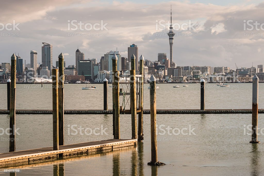 floating docks in Auckland marina at sunset stock photo