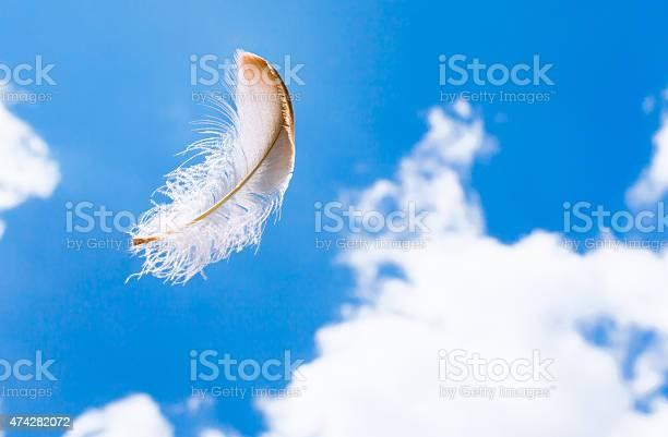 Floating feather in the sky picture id474282072?b=1&k=6&m=474282072&s=612x612&h=az96huftzoeyhalnyqbyo 2sdzzdw3ufrlpyntqejlq=