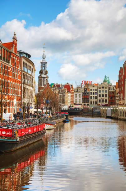 blumenmarkt in amsterdam - günstig nach amsterdam stock-fotos und bilder