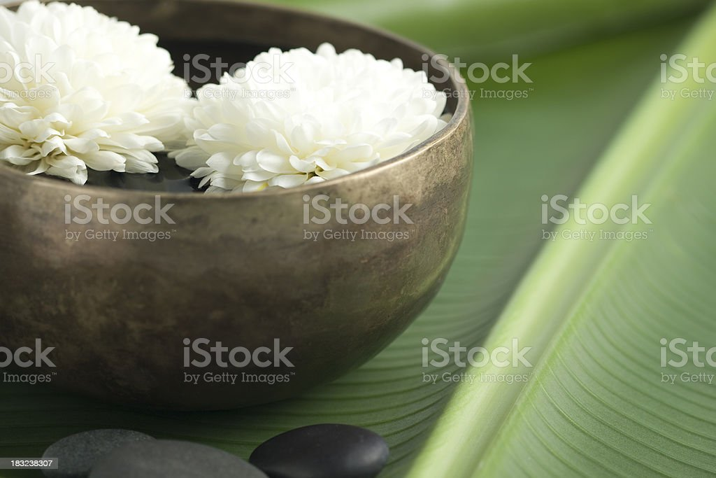 Floating flowers in spa setting stock photo