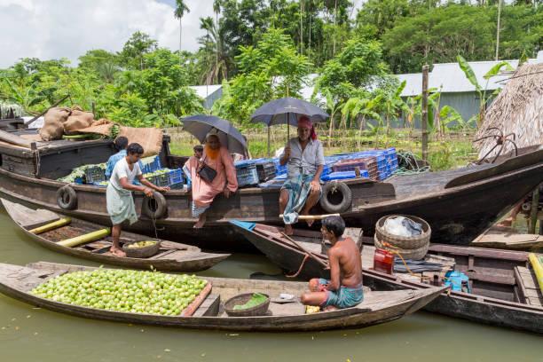 Barisal, Bangladesch - 11. Juli 2016: Schwimmende Guave-Markt auf den Backwaters von Barisal. Verkauf an Großhändler auf dem größeren Boot. – Foto