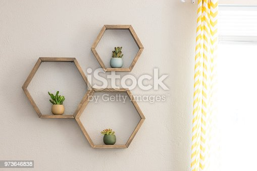 istock Floating hexagon shelves with inside plants 973646838
