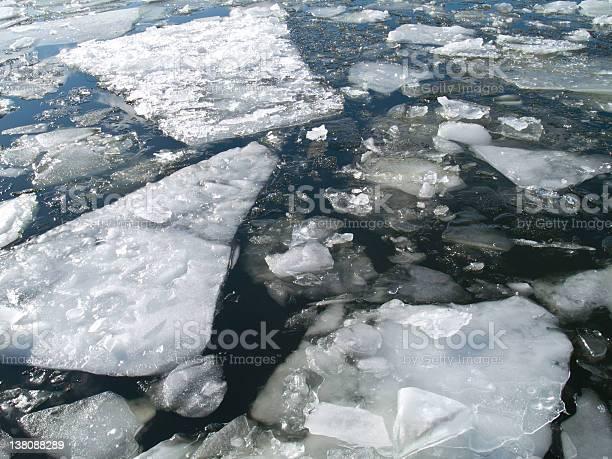 Photo of floating ice
