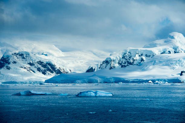 湖に浮かぶ氷山南極付近 - 南極旅行 ストックフォトと画像