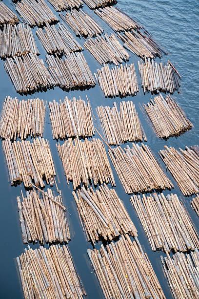 Schwimmende log-Pakete – Foto