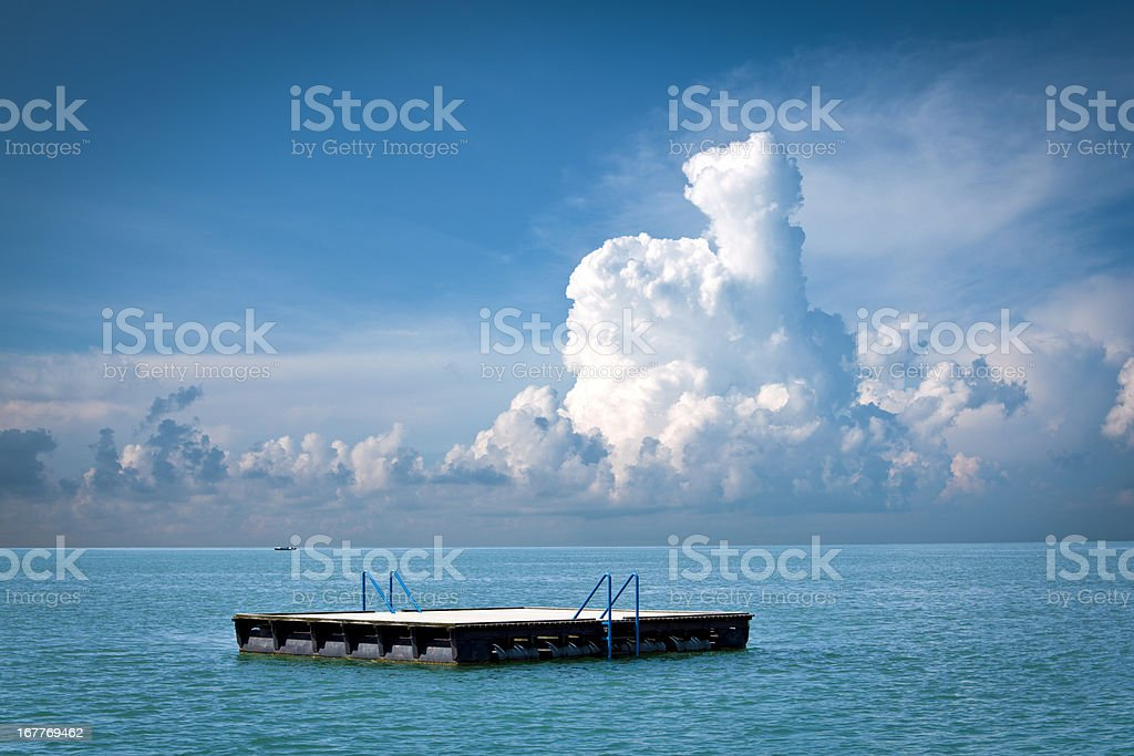 floating on water stock photo