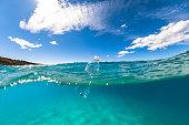 Floating plastic bottle on ocean surface