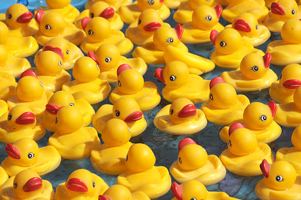 floating rubber duckies - school fete stock photos and pictures
