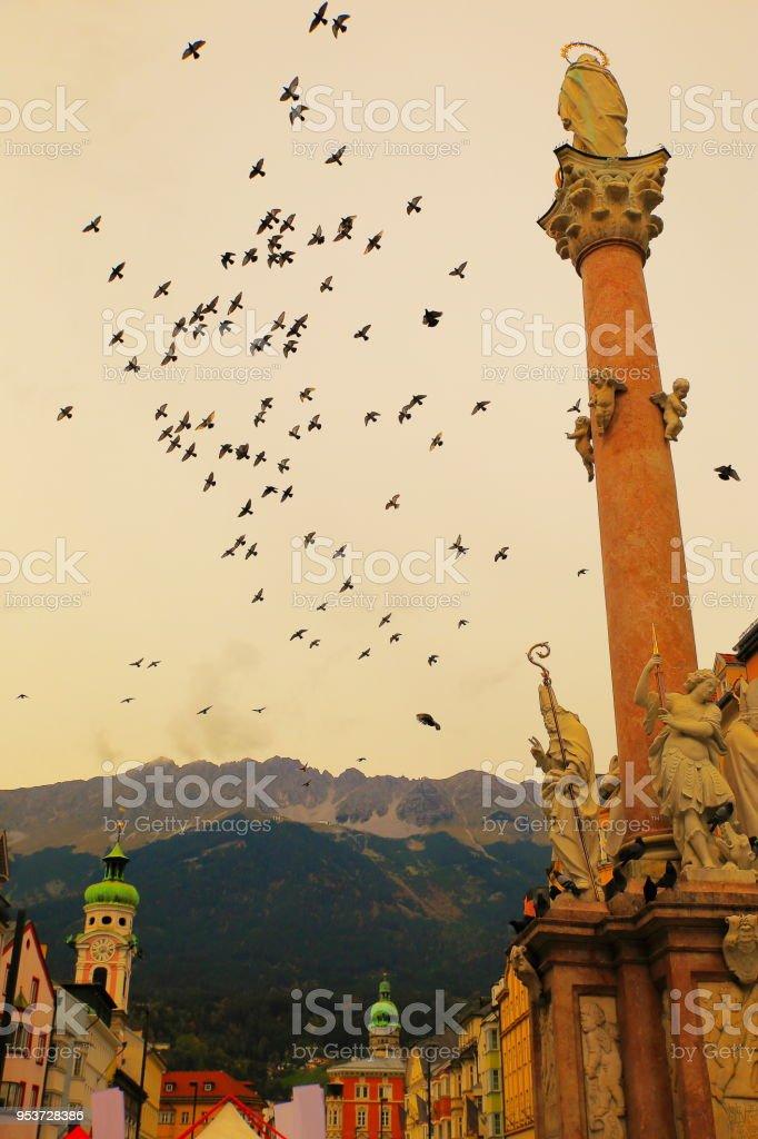 Flock of birds flying around St. Anne's Column, Innsbruck – Tyrol, Austria stock photo