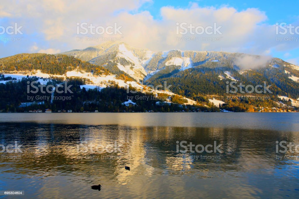 Flock of ducks floating on Beautiful Zeller lake at sunset - Zell am See and Mountain range landscape, Tirol landscape in Austrian Salzburger land, Austria stock photo