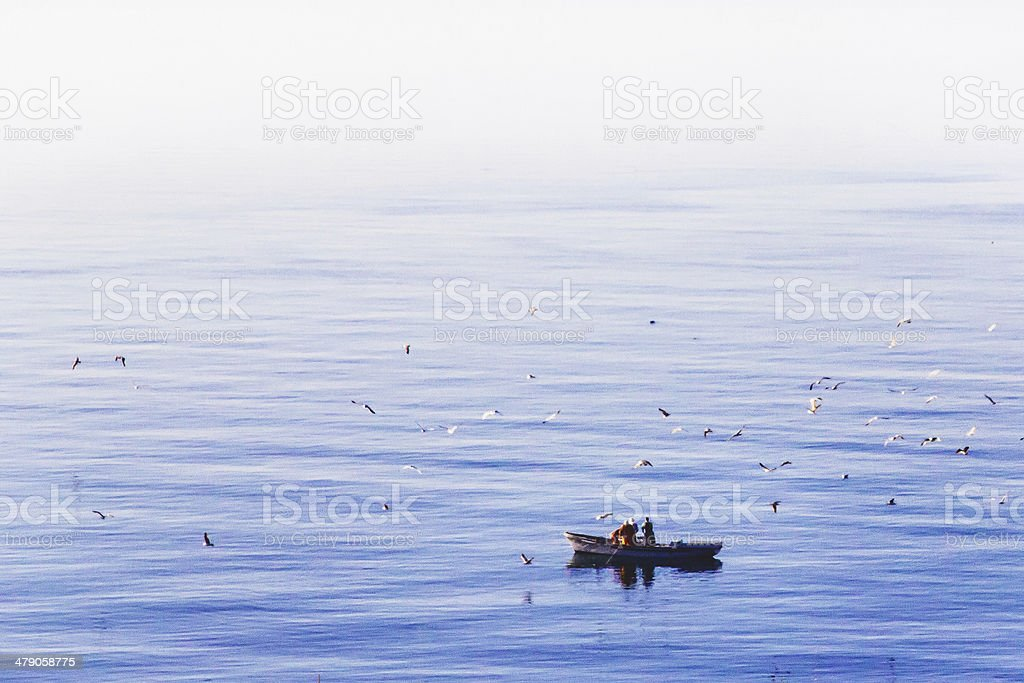 Flock of seagulls flying under fishermen in the boat royalty-free stock photo
