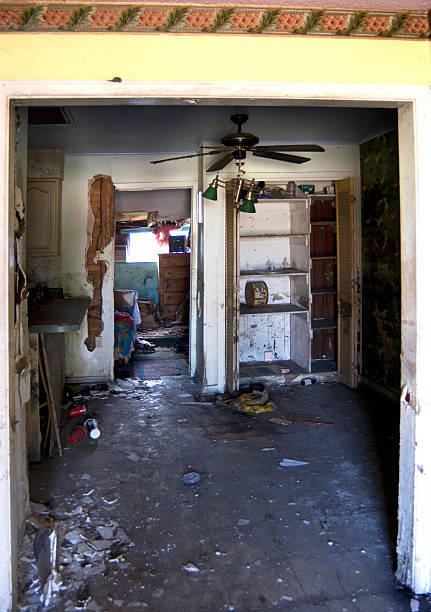 flood damaged house - flooded room stock photos and pictures
