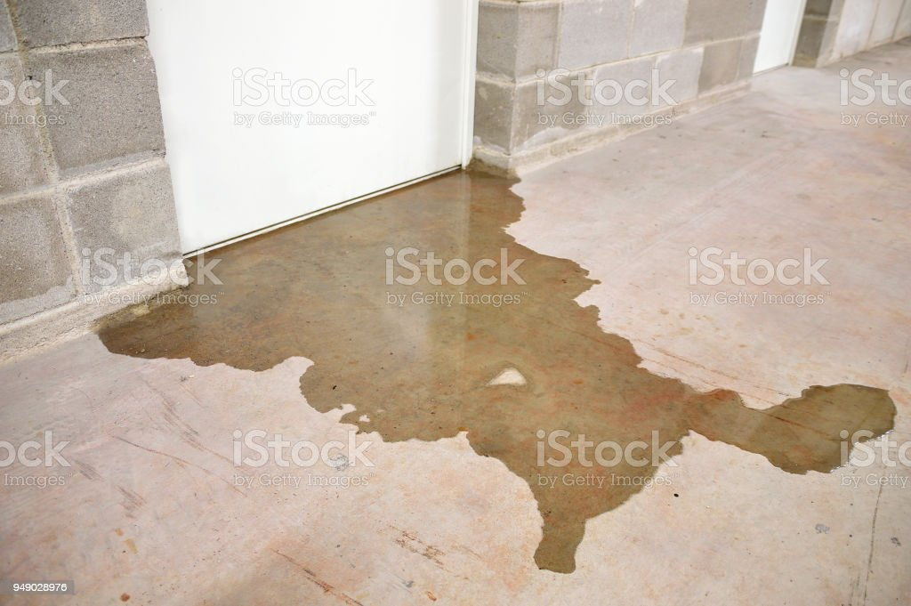 flood in my building stock photo