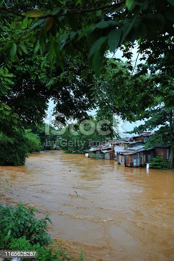 floods in the river, houses on the banks of the river affected