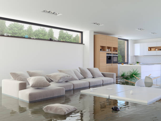 flood - flooded room stock photos and pictures