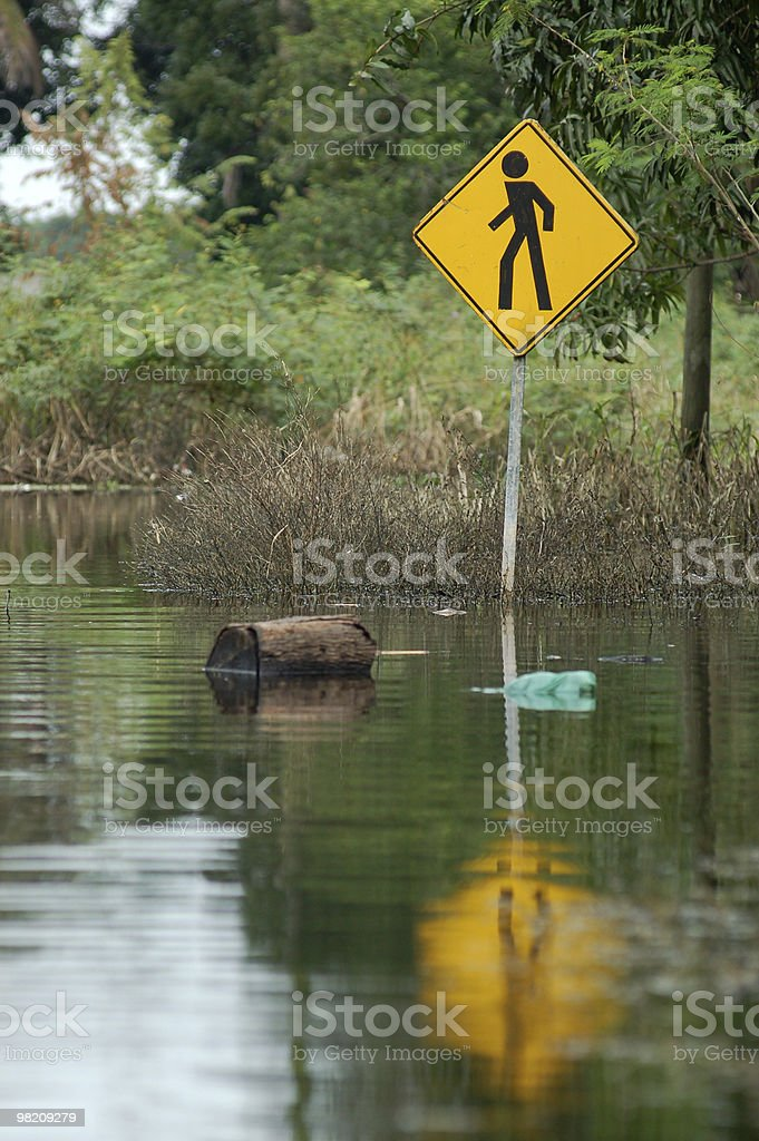 Flood Water Reflection royalty-free stock photo