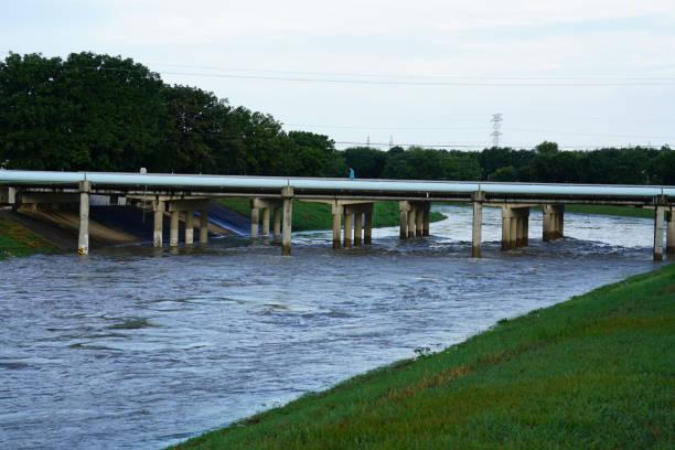 Flooded Bayou stock photo