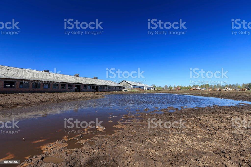 Flooded farm royalty-free stock photo