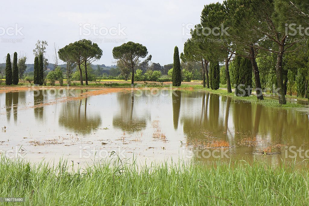 Flooded fields royalty-free stock photo