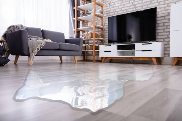 flooded floor in the living room - danneggiato foto e immagini stock