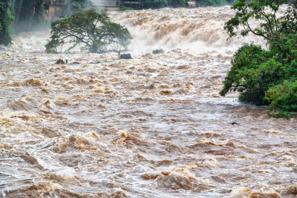 inondé d'eau boueuse. dépassement de capacité. - desastre natural photos et images de collection