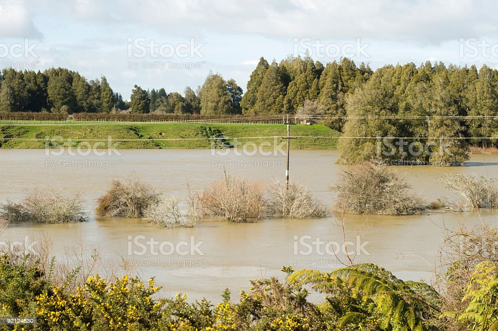 flooded river royalty-free stock photo