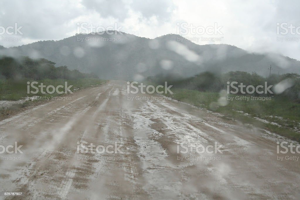 Flooded Road, African Bush during Rainy Season, Tsumkwe, Namibia, Africa stock photo