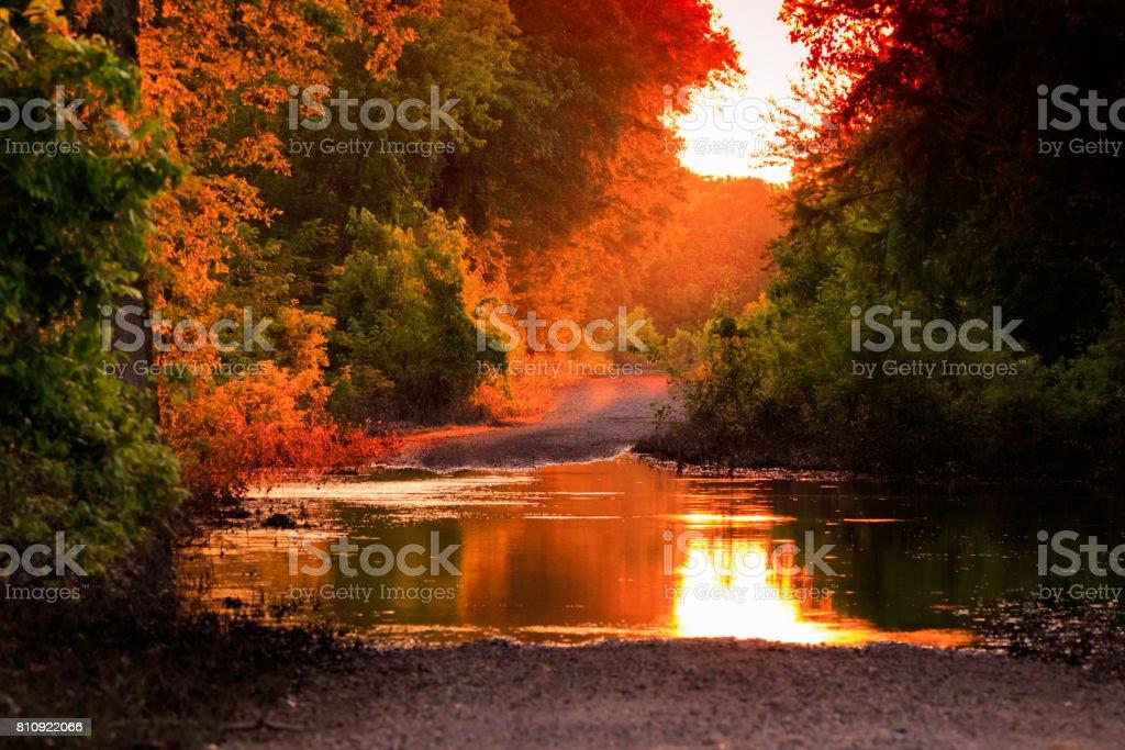 Flooded Sunset stock photo