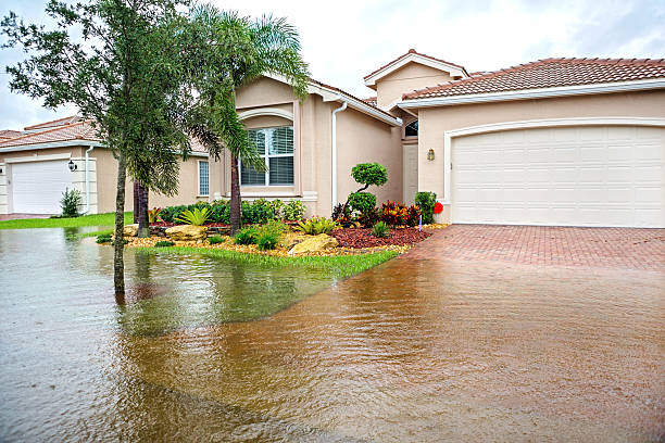 flooding from a hurricane - damaged stock photos and pictures
