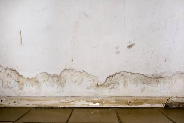 overstromingen van regenwater of vloerverwarming, waardoor schade, peeling verf en meeldauw. - beschadigd stockfoto's en -beelden