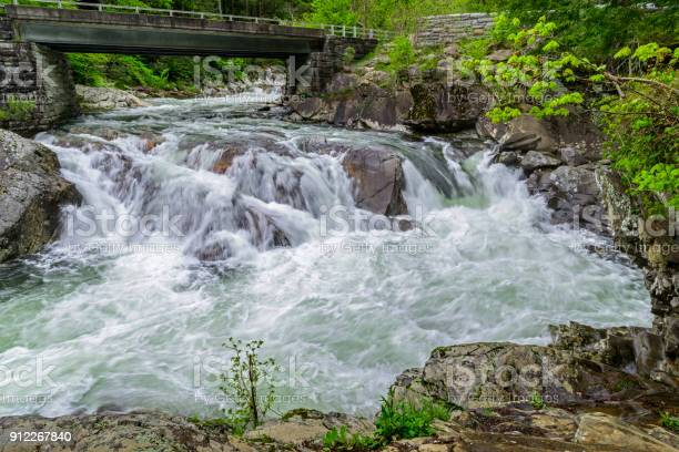 Photo of Flooding Rapids in the Great Smoky Mountains National Park