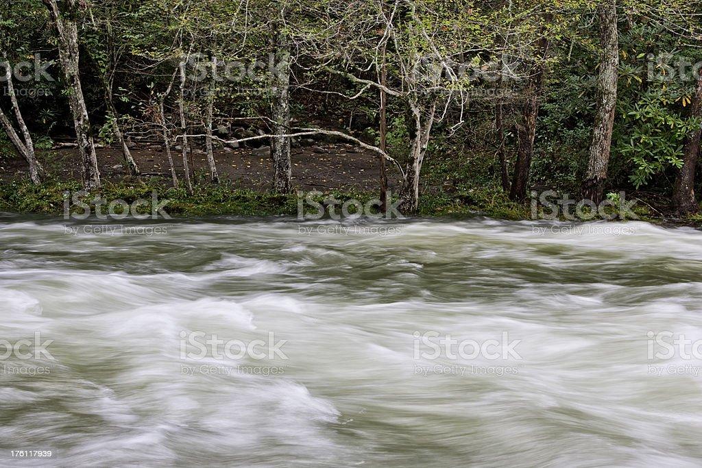 Flooding river (XXL) royalty-free stock photo
